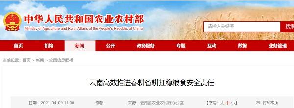 云南有效地促进了春耕和犁耕稳定粮食安全的责任