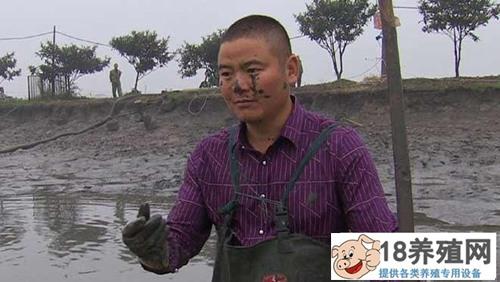 沈文根:甲鱼混养黑鱼 养鱼一年多卖1000万元
