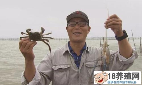 王俊卖上瘾的大闸蟹年赚上千万