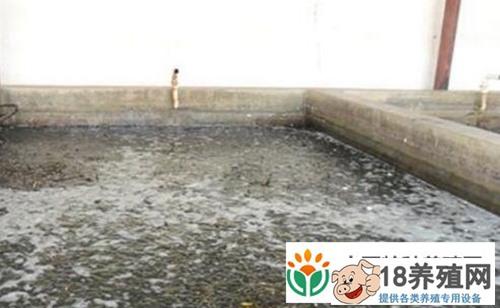 泥鳅池塘养殖搭建