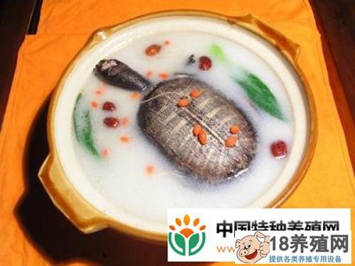 清炖甲鱼汤做法介绍(3)