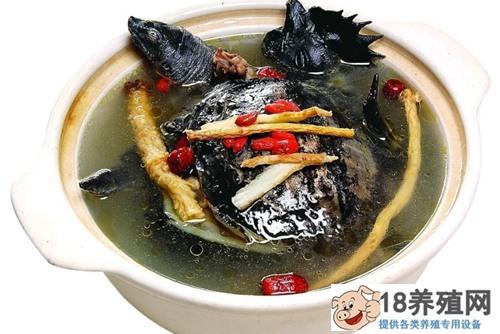 清炖甲鱼汤做法介绍(2)