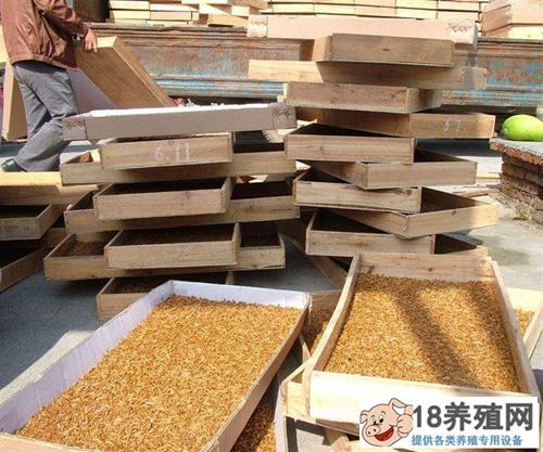 养殖黄粉虫条件及设备要求