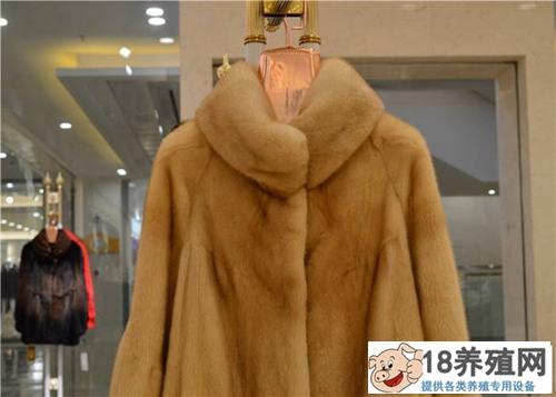 水貂皮大衣怎么清洗和保养