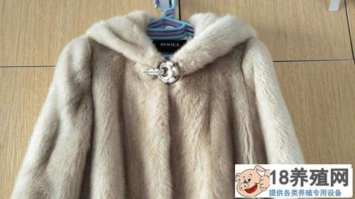 水貂皮大衣怎么清洗和保养(2)