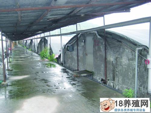 甲鱼人工养殖管理要点(3)