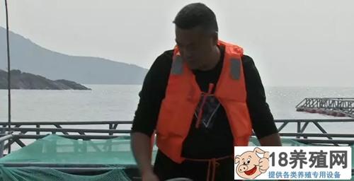"""青蟹住""""别墅""""还能错季养 海鱼轮当家(2)"""
