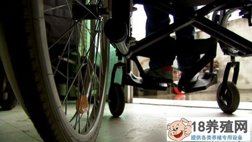刘家学坐着轮椅撑起天养殖泥鳅青蛙每亩多赚3000元
