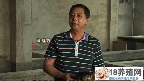 黄辉兴:一只乌龟起家 靠养殖金钱龟年收入近千万元