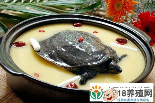 甲鱼汤的功效与好处