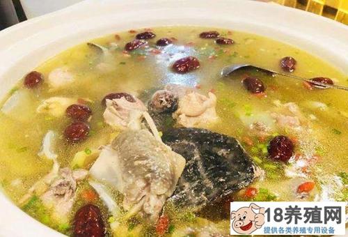 甲鱼汤的功效与好处(2)