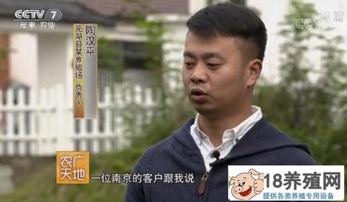 芜湖青年陶汉平返乡养螃蟹 蟹中寻财年入千万