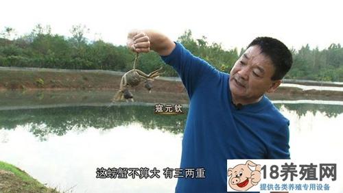"""寇元钦""""魔咒""""泉里养螃蟹,3个月要捞2000万!"""