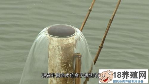 """寇元钦""""魔咒""""泉里养螃蟹,3个月要捞2000万!(4)"""