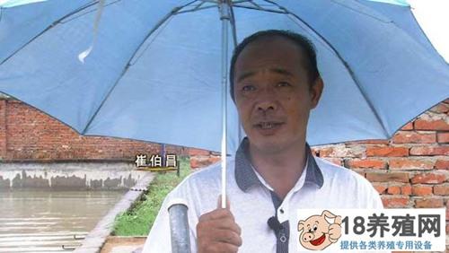 安徽寿县崔伯昌养甲鱼卖甲鱼蛋年销售额六百万