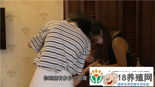 爱美懒媳妇懒招赚快钱 稻田养甲鱼1亩收入1.6万元(4)