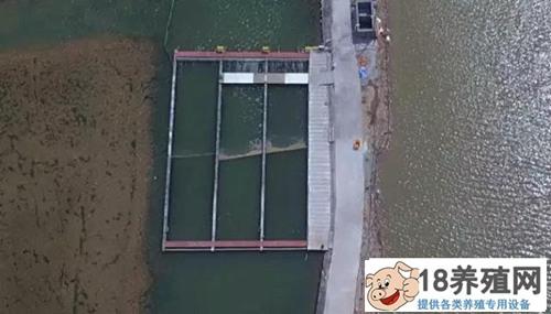 共享池塘 小贝不再怕大蟹(3)