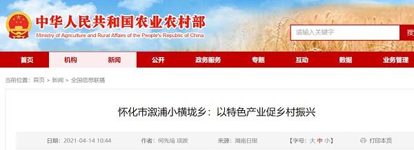 怀化市溆浦小恒隆乡:以特色产业推动农村振兴