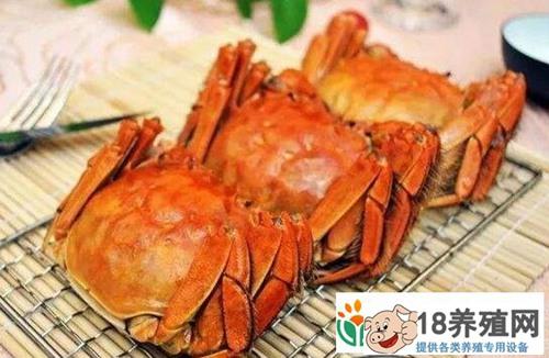 2018螃蟹集中上市期蟹价不跌反涨,一只卖到38元!