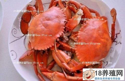 螃蟹多少钱一斤?2018年螃蟹价格走势分析