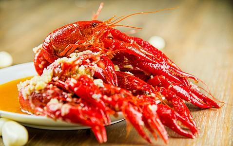 小龙虾吃什么食物?养殖小龙虾为什么不吃?