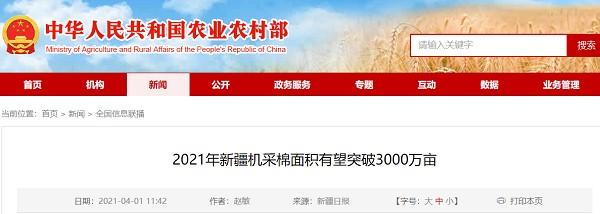 2021年,新疆棉花采摘面积预计将超过3000万亩