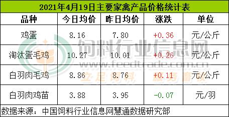 4月19日,CFT鸡评论称,鸡蛋价格上涨,鸡肉和肉鸡价格继续上涨。鸡的价格继续下跌