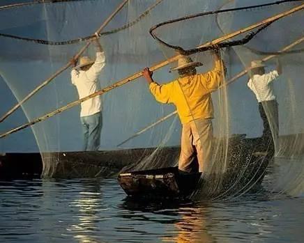 这四个部门部署了专项工作,以促进长江流域重点水域的非法捕捞活动