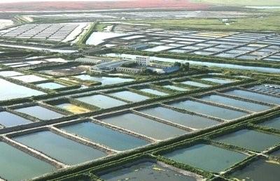扩大面积,增加产品,提高标准!2021年,浙江水产互助保险将再次加强