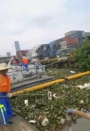 """1.6吨猪腐肉""""漂""""在珠江上!消息来源仍在调查中  农村畜牧业污染谁负责?"""