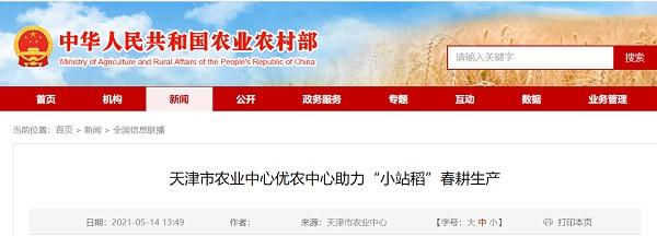 """天津农业中心优秀农业中心帮助春耕生产""""小站稻"""""""
