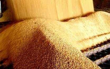 豆粕库存稳定,基差下降,价格波动调整