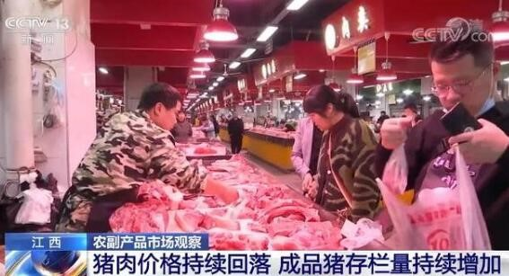中国的生猪数量将保持在4亿头以上,猪肉供应将明显好于去年