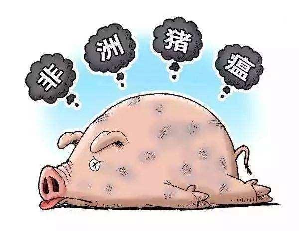 农业和农村事务部对生猪屠宰企业的非洲猪瘟检出率为4.94%