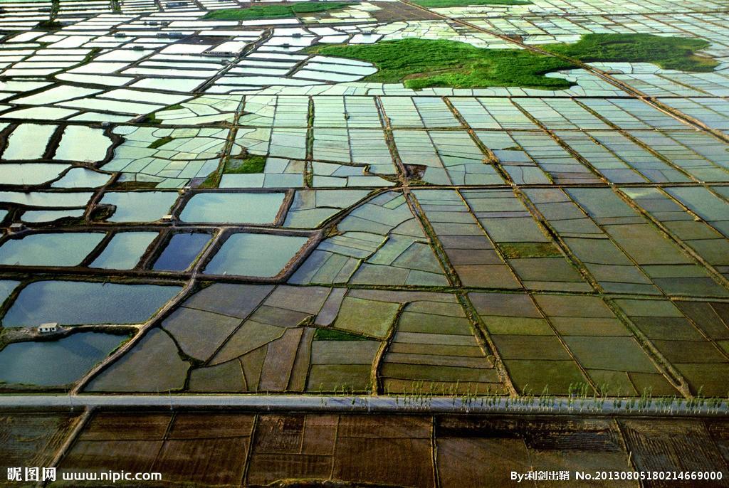 安徽芜湖苗木和水产品销售恢复缓慢
