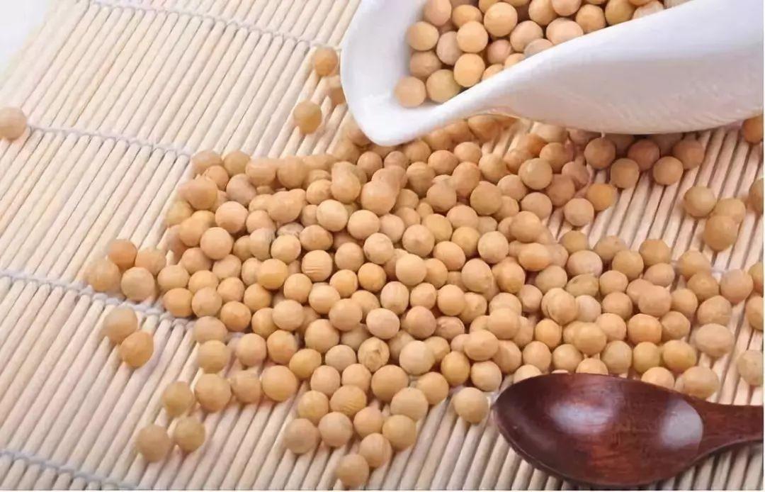 美国肉类对玉米和大豆的出口价值