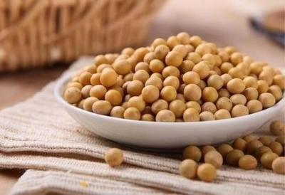 CBOT豆粕价格下跌,在大豆价格飙升后下跌