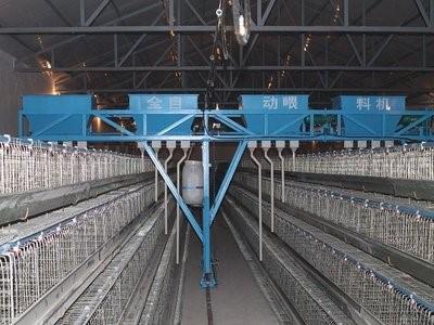 鸡舍清粪机的适用范围、特点及安装注意事项