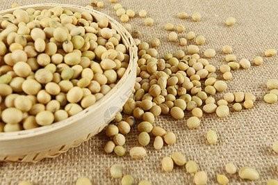 巴西的大豆收成落后,用卡车运输大豆的成本飙升