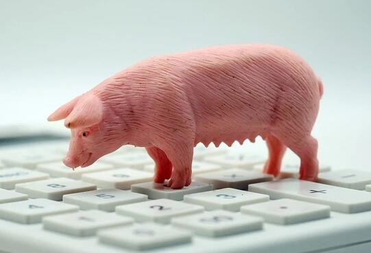 """市场""""缺猪没肉""""?a股猪肉盘薄,生猪企业如何逆袭?"""