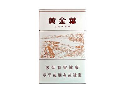 黄金叶(三门峡)